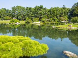 Zeleň - japonská zahrada