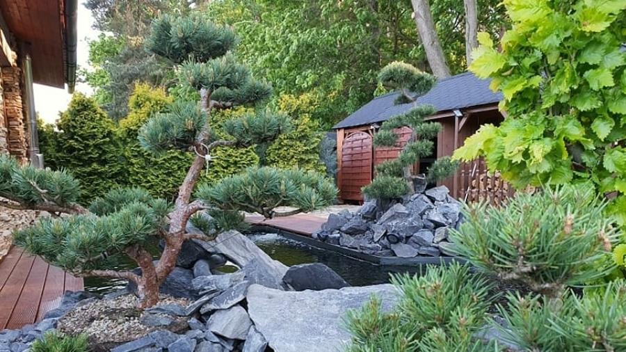 Ukázka využití tvarovaných stromů Niwaki v zahradě našeho zákazníka.